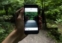 Person som håller i en iPhone med en instagrambild på en skog och bro